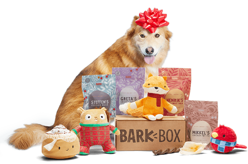 Dog Toys Treats Gifts Every Month