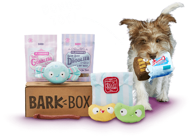Barkbox A Monthly Box Of Dog Goodies Starting At 22 Per Month